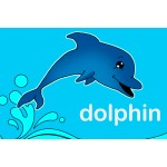 Dolphin - 38mm Deep Framed Canvas Print