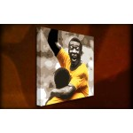Pele - 38mm Deep Framed Canvas Print
