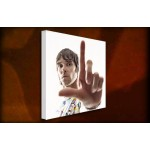 Ian Brown - 38mm Deep Framed Canvas Print