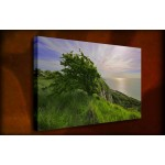 Wind Formed - 38mm Deep Framed Canvas Print