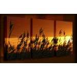 Wind Blow Reeds - 3 Multi-Panel Canvas Prints
