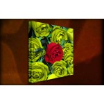 One Red Rose - 38mm Deep Framed Canvas Print