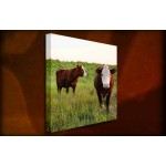 Get off my Field - 38mm Deep Framed Canvas Print